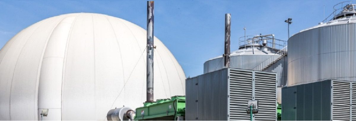 Permalink to: Biogas production